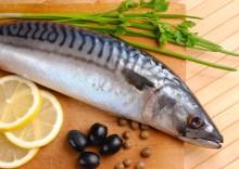 Польза и вред скумбрии + калорийность аппетитной рыбки