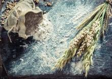 Живой талкан: польза и вред муки из пророщенного зерна
