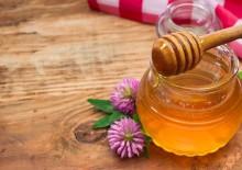 Клеверный мед – полезные свойства