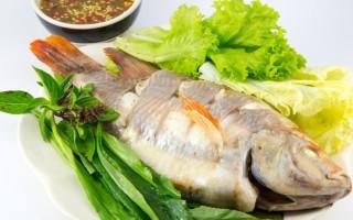 Рыба тилапия – полезные свойства и очевидный вред