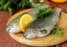 Полезные свойства форели, противопоказания и калорийность