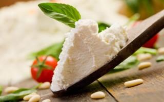 Польза и вред сыра рикотта