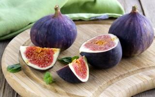 Польза и вред плодов и листьев инжира