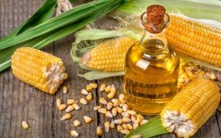 Кукурузное масло — полезные свойства и противопоказания в подарок от зародышей кукурузы