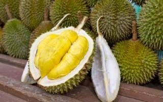 11 полезных свойств дуриана