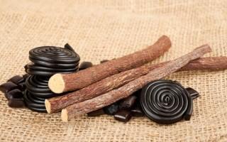 Полезные свойства корня солодки и противопоказания