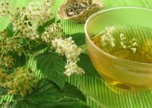 Таволга – полезные свойства и противопоказания лабазника