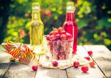 Сок из крыжовника – полезные свойства