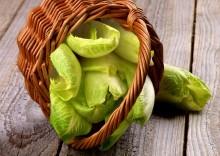 Полезные свойства эндивия или салатный цикорий на кухне