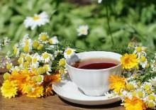 Лучшие травяные чаи для кожи