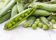 Полезные свойства и противопоказания зелёного горошка