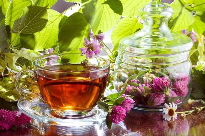 чай с красным клевером