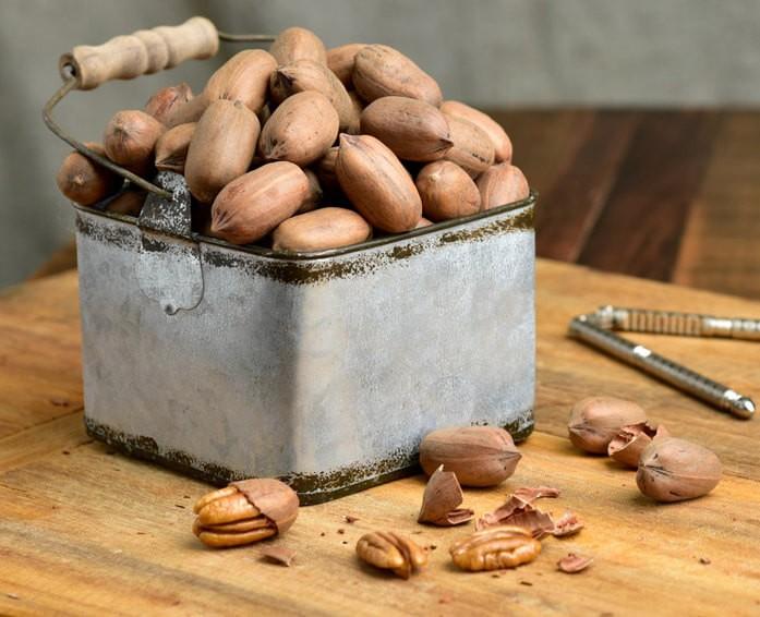 пеканы в скорлупе в металлической таре и несколько расколотых орехоколом плодов на столе