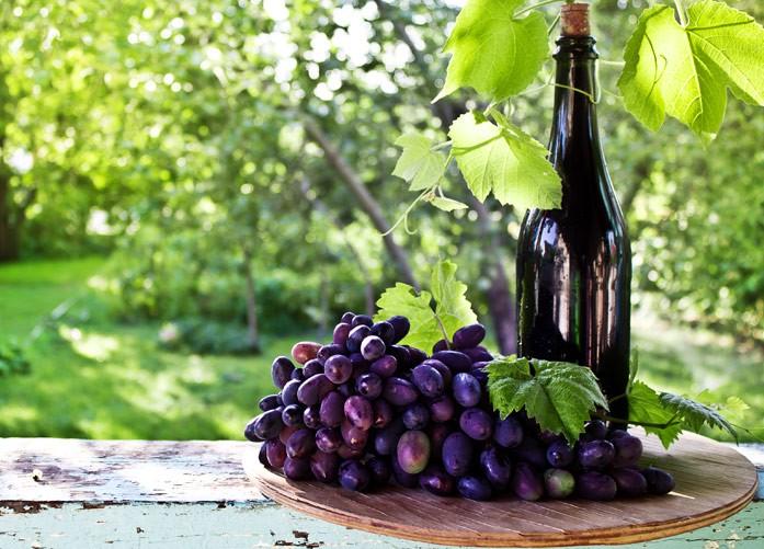 """виноград """"Мальбек"""" и вино"""