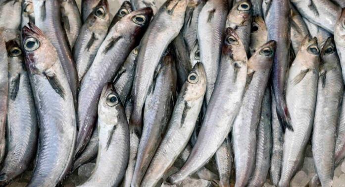 сырая рыбка путассу