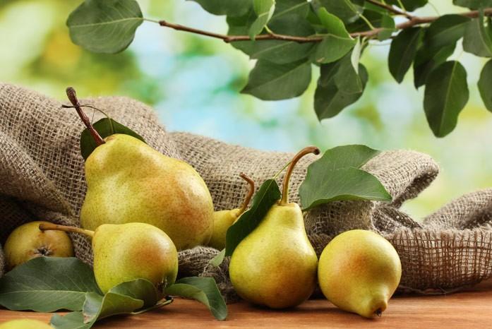 урожай груш на деревянном столе